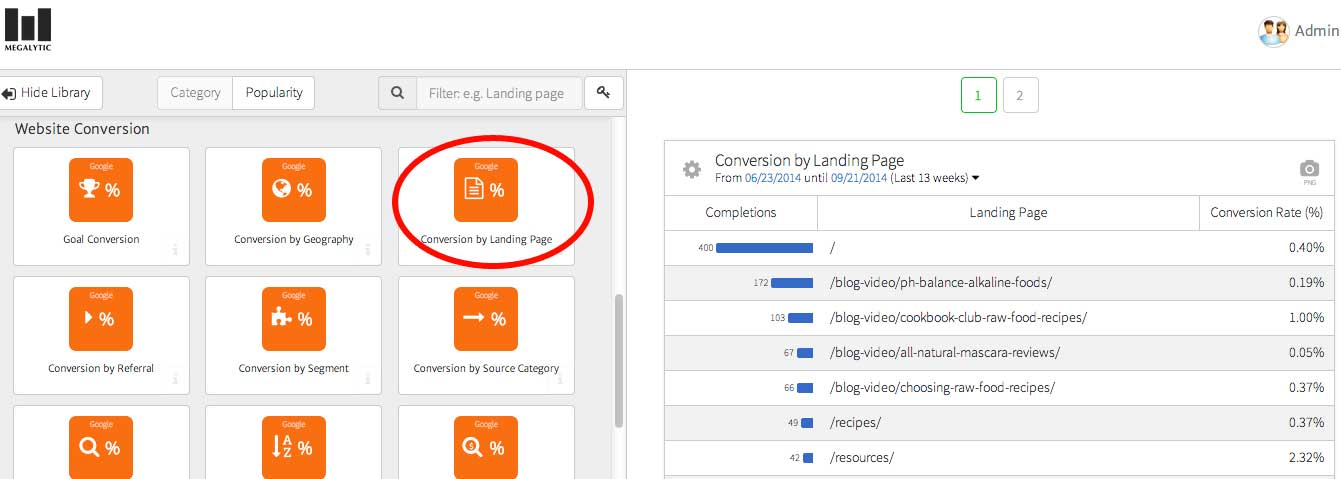 megalytic report on landing page conversion