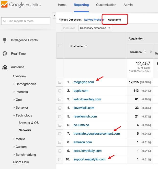 Google Analytics Report on Hostnames