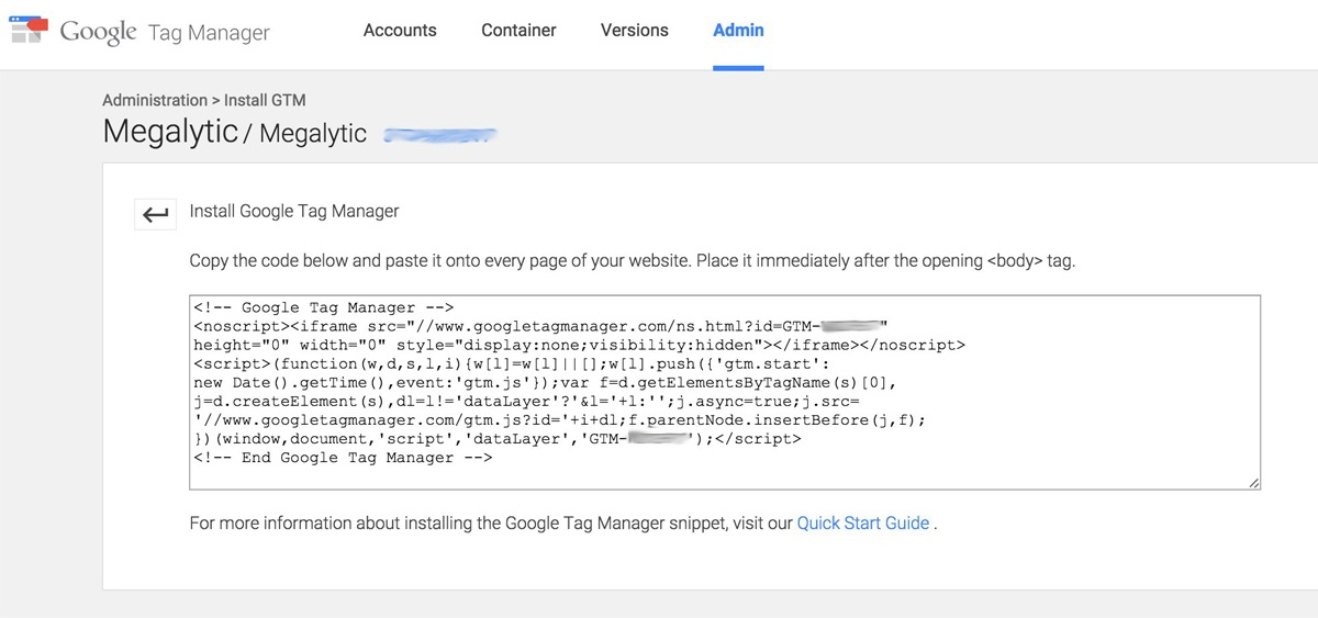 Google Tag Manager Code Snippet