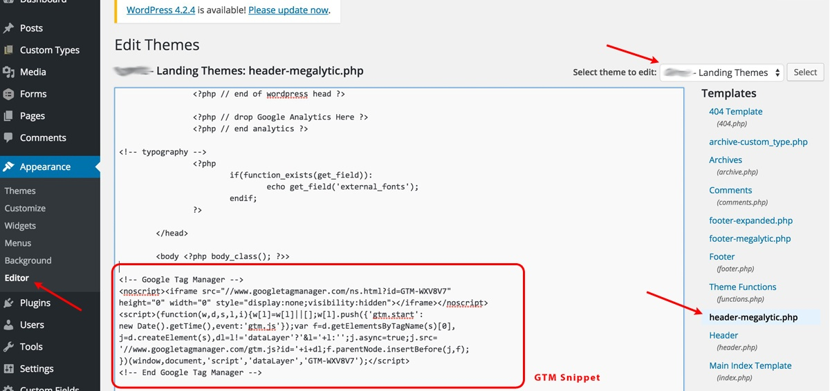 Insert Google Tag Manager Snippet in WordPress Header File