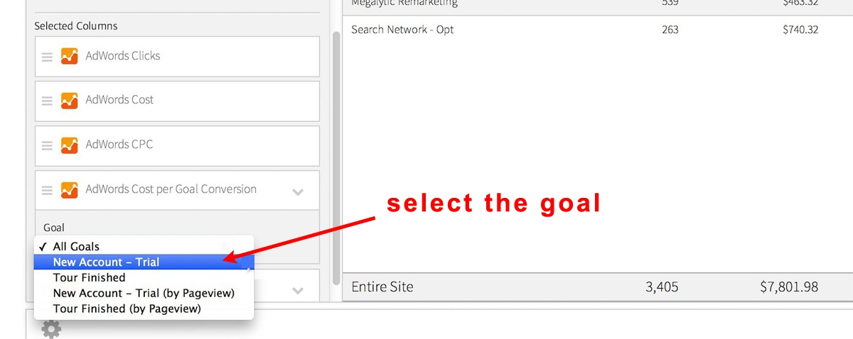 image showing how to select goals in a Megalytic adwords report