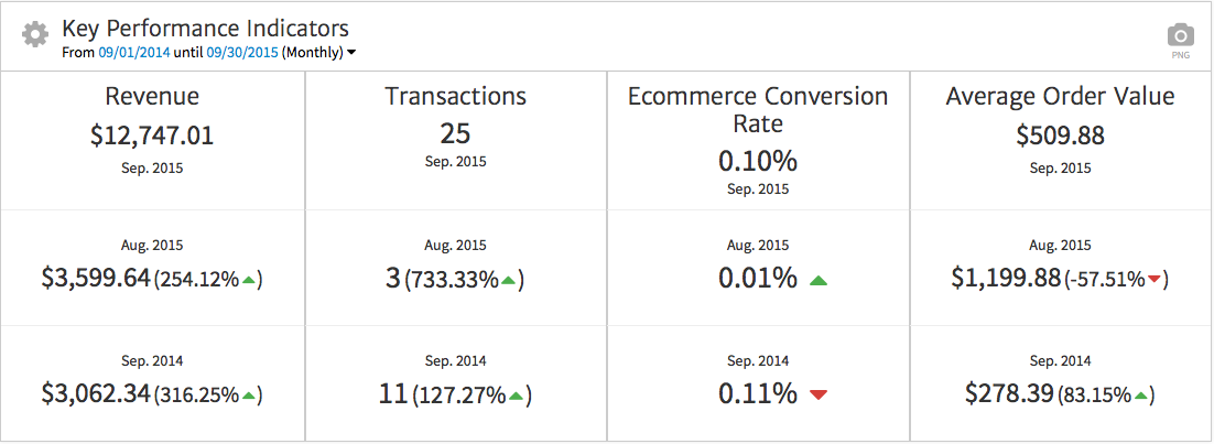 Ecommerce KPIs Displayed with Megalytic