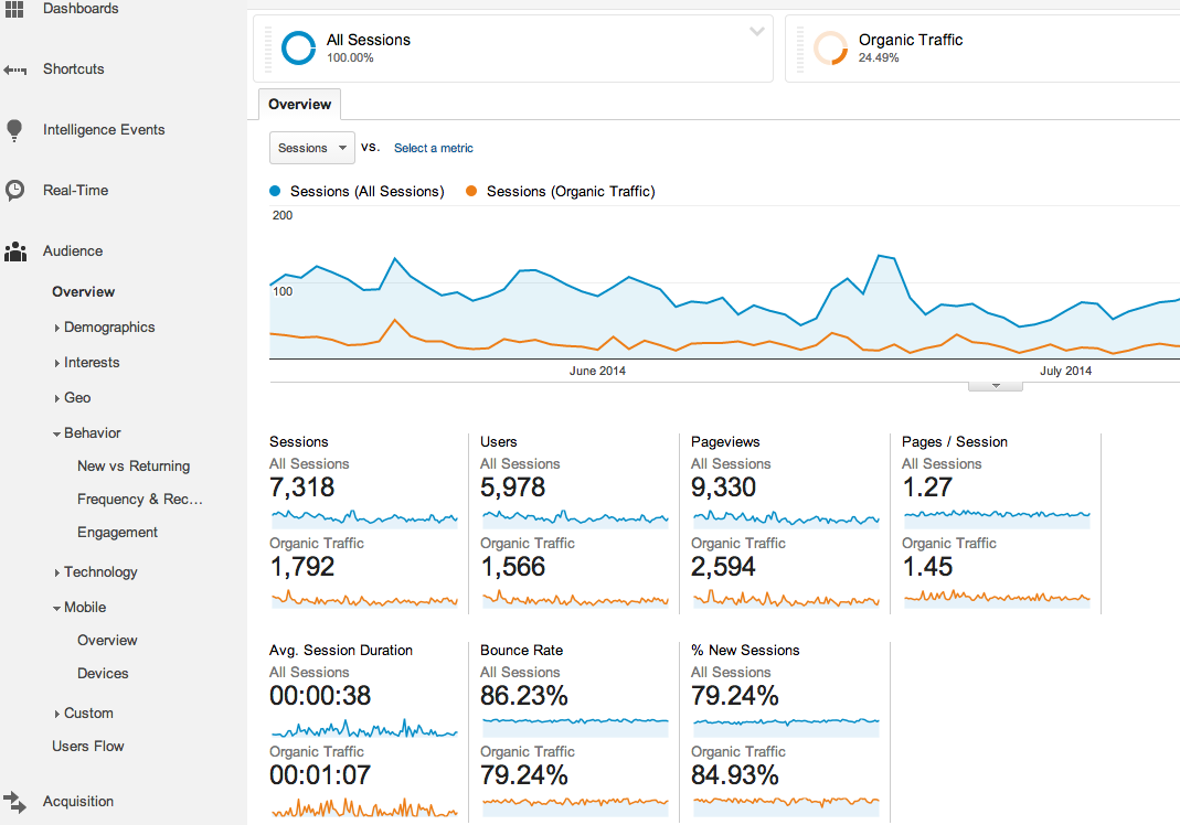 google analytics organic traffic overview