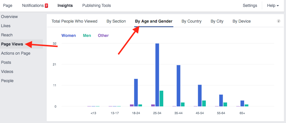 Facebook Insights Breakdown of Pageviews by Age and Gender