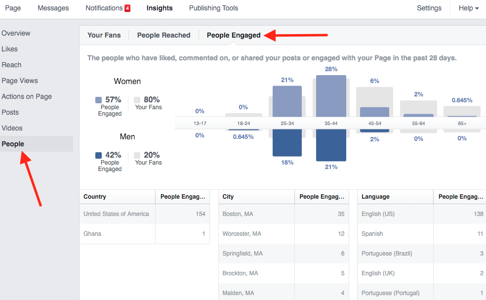Facebook Insights Demographics of Engaged Users