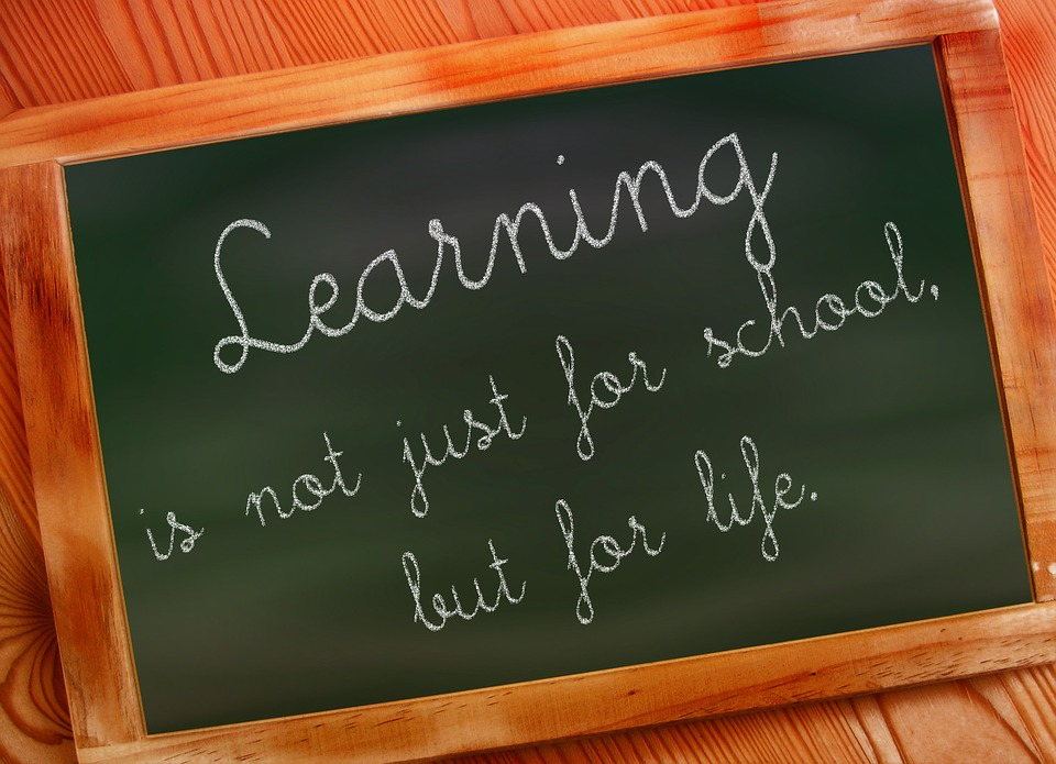 Learning is Not Just for School