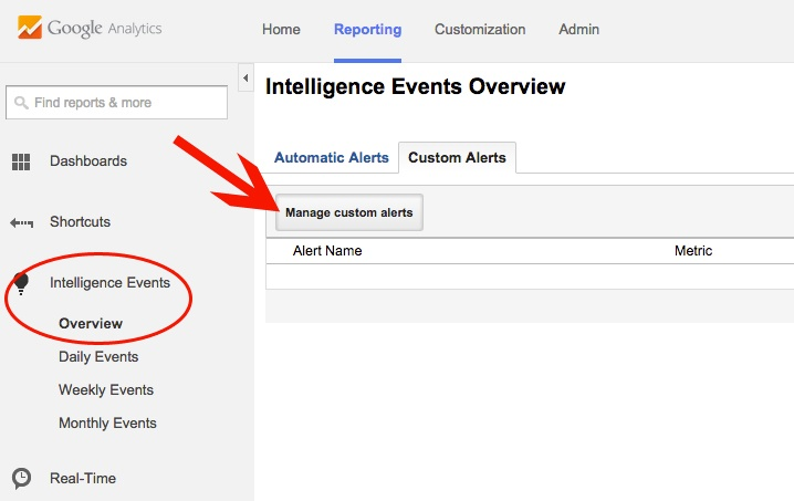 Setting up an Alert in Google Analytics