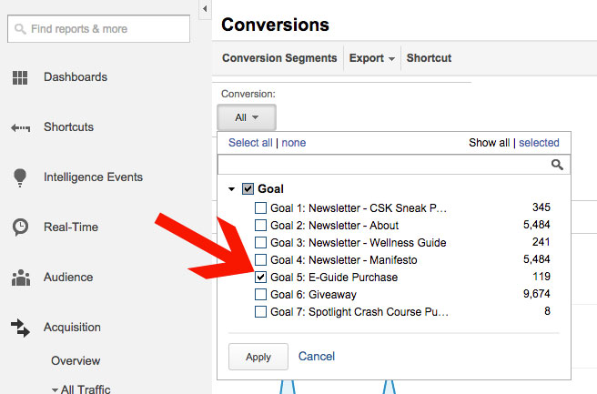 Google Analytics Selecting a Goal for Social Conversions Report