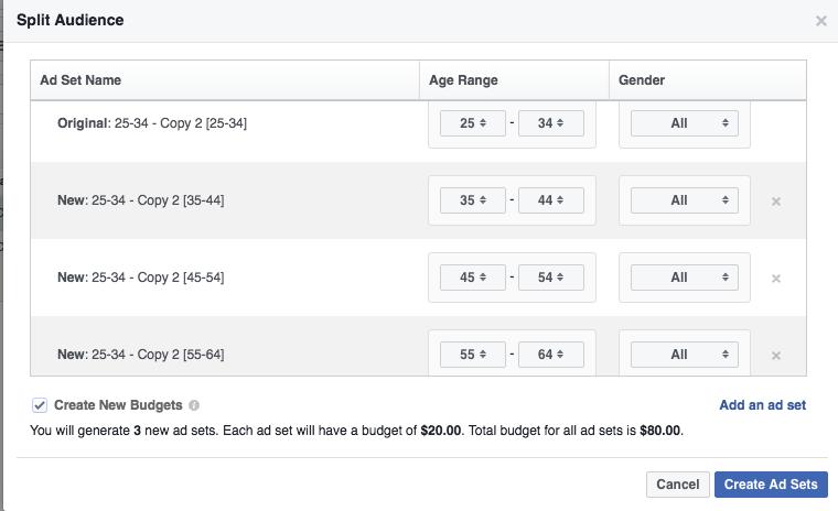 Facebook Power Editor Split Audiences